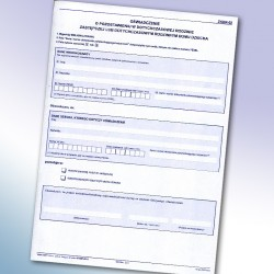 ZKDR-02, Oświadczenie o pozostawieniu w dotychczasowej rodzinie zastępczej lub dotychczasowym rodzinnym domu dziecka